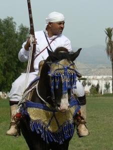 Agadir horseman